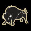 Harding U logo