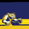 TA&M-Comm logo